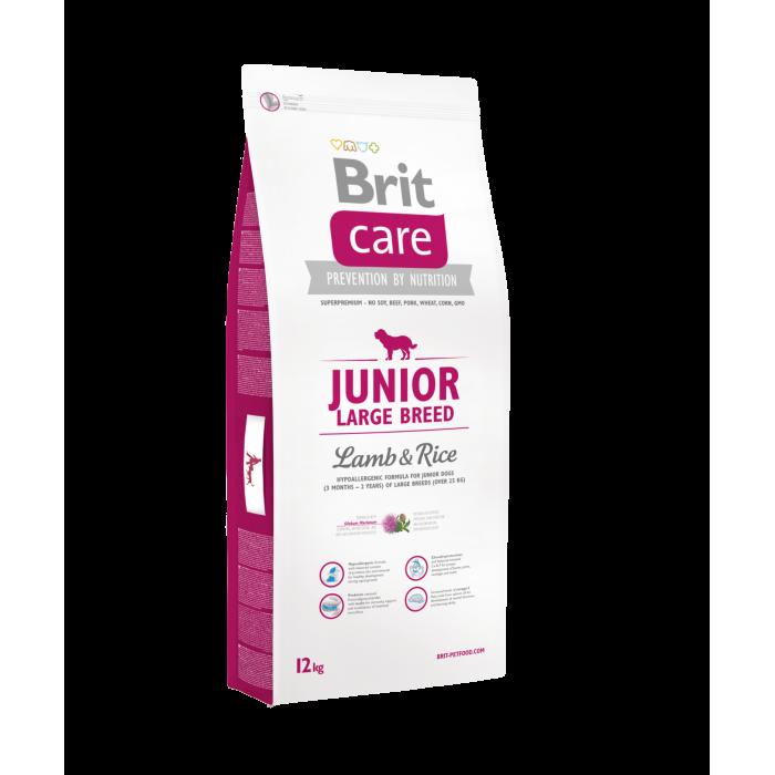 Brit Care Large Breed Junior Lammasta & Riisiä  12 kg Karitsaa & Riisi