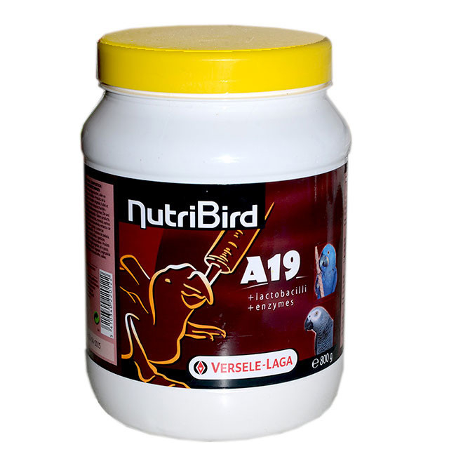 NutriBird A19 by Versele Laga 3 kg, 800 g buy online