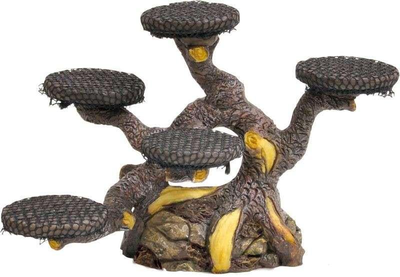 Dennerle Bonsai Tree   met korting aantrekkelijk en goedkoop kopen