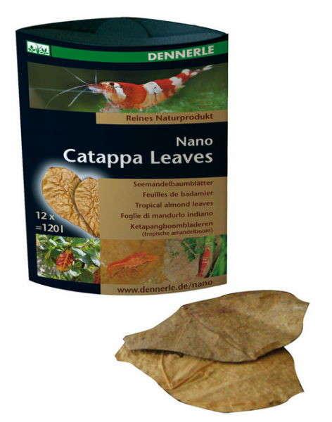 Dennerle Nano catappa leaves   met korting aantrekkelijk en goedkoop kopen