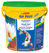 Koi Royal Large 2 kg