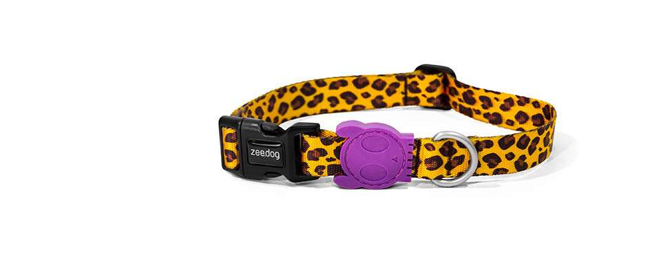 Zee.Dog Collar Honey S Honey