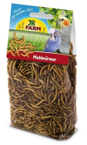Mehlwürmer von JR Farm 25 g online günstig kaufen