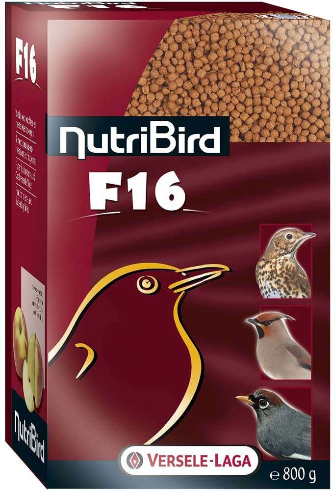 NutriBird F16 Maintenance food by Versele Laga 800 g buy online