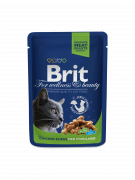 Premium Cat Pouches Chicken Slices for Sterilised 100 g från Brit