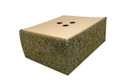 JR Farm Back to Instinct Buddel-Box  4024344192265 Erfahrungsberichte