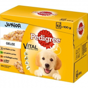 Pedigree Multipack Junior in Gelee 12x100 g