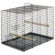 Transport cage for parrots