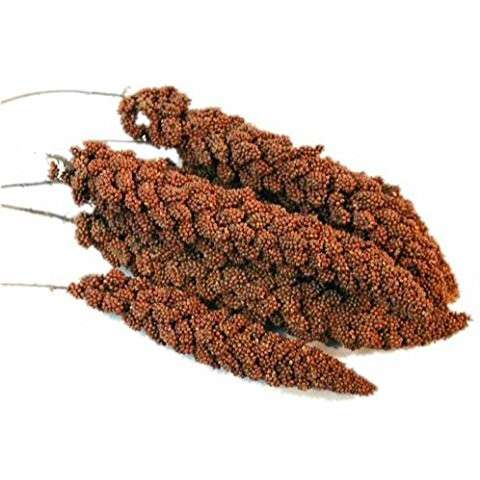 French Red, Mohar by Moreau 15 kg buy online