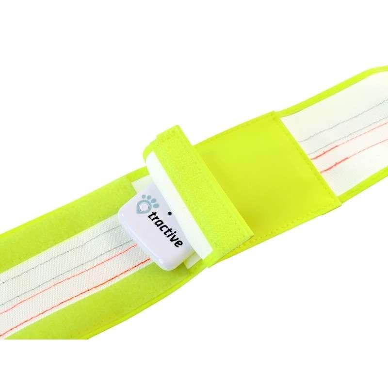 TRACTIVE Refleksbånd med lomme til GPS tracker 34-41cm, S  Gul S