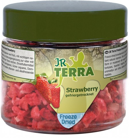 JR Farm Terra Freeze Dried Strawberry Erdbeere 10 g 4024344108228