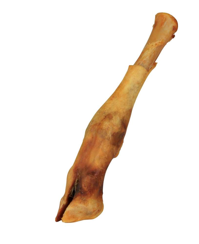 Shanks Lamb's Feet 16-18 cm  by Trixie Buy fair and favorable with a discount