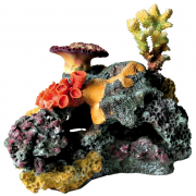 Coral Reef 32 cm Trixie
