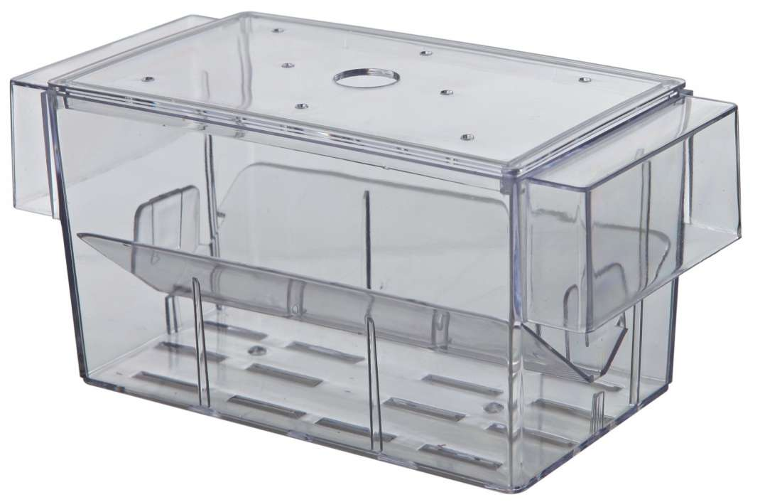Accessoires  Pondoir à Poisson 16×7×7 cm  de chez Trixie achats pas cher