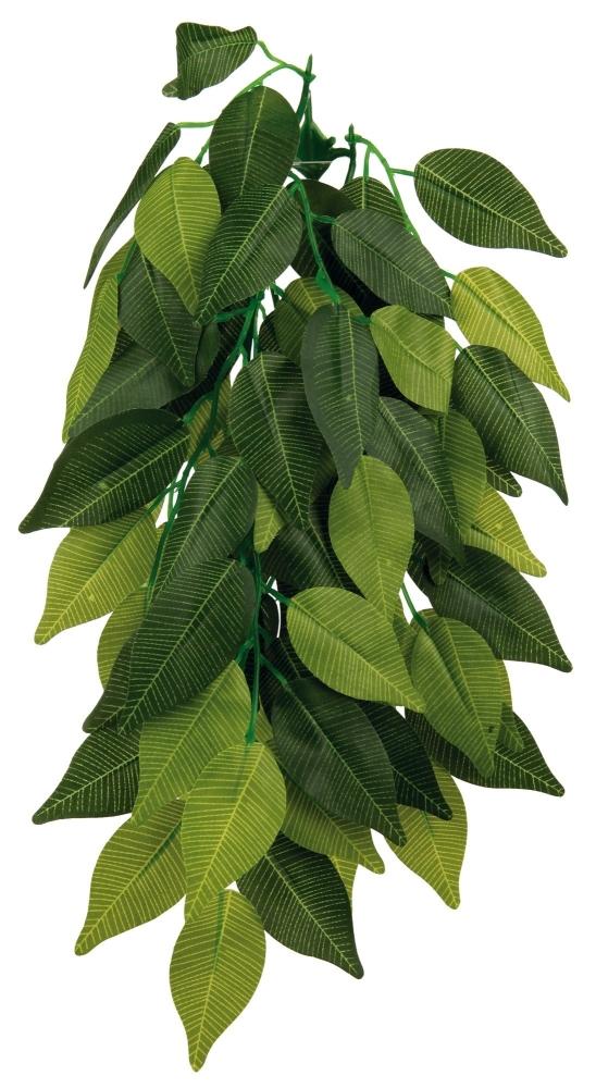 Seiden-Hängepflanze Ficus 20x30 cm  von Trixie