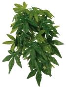 Trixie Seiden-Hängepflanze Abutilon 20x30 cm