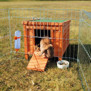 Small Animal Home Ruskea