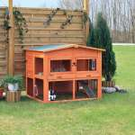 Trixie Small Animal Hutch XL with Enclosure