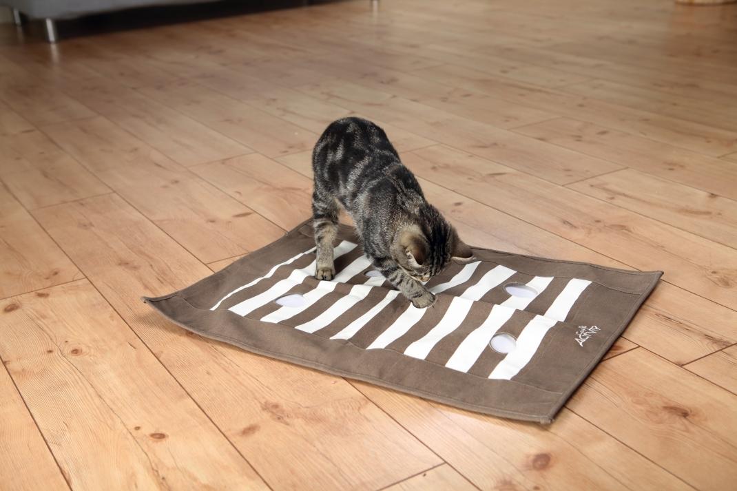 Trixie Cat Activity Trappel-Deken Strategisch Spel  Lichtbruin  70×50 cm