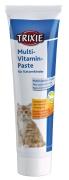 Multivitamine-Pasta voor Kittens 100 g