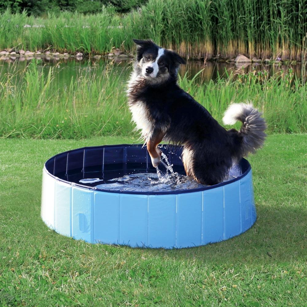 Hundepool 120x30 cm Hellblau von Trixie online günstig kaufen