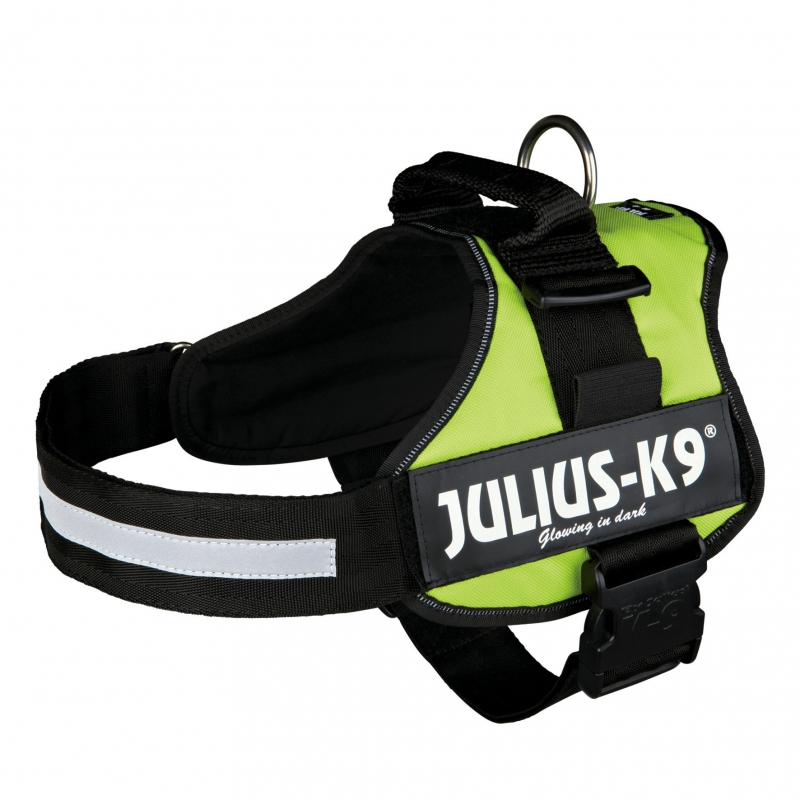 Julius K9 PowerArreios XL