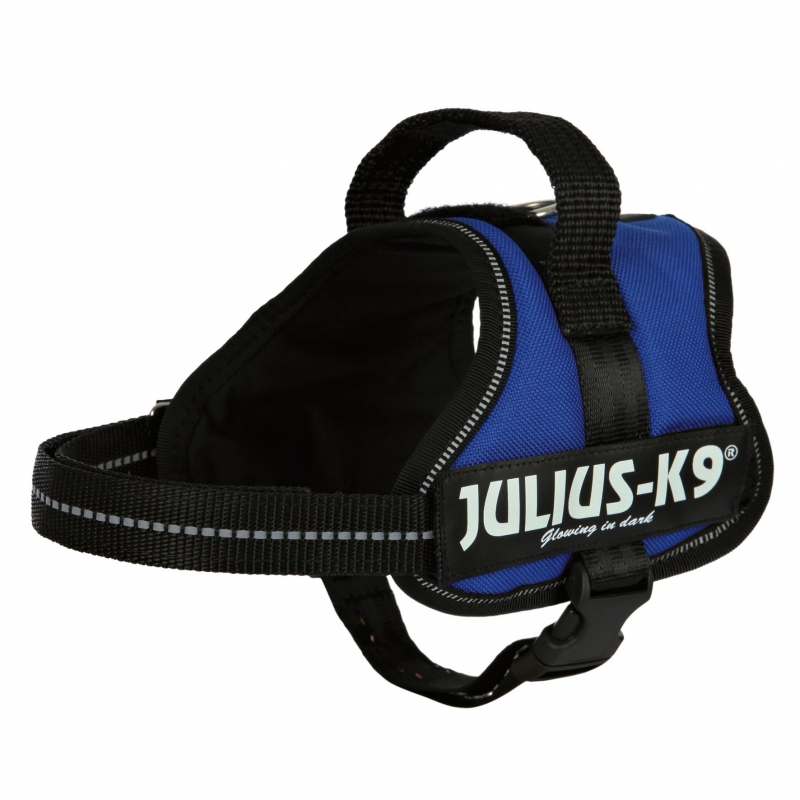 Julius K9 Power Arneses Mini, Mini/M  Azul M