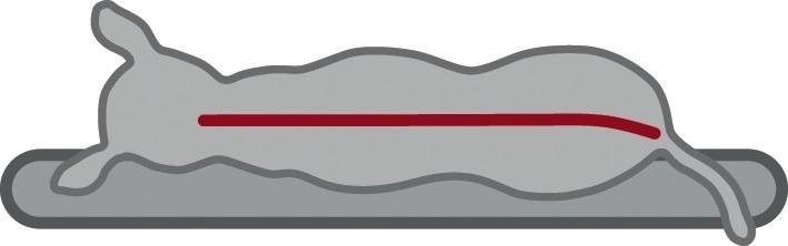 Trixie Lino Vital Bed  60x45 cm Svart