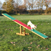 Dog Activity Agility Seesaw 300x54x34 cm