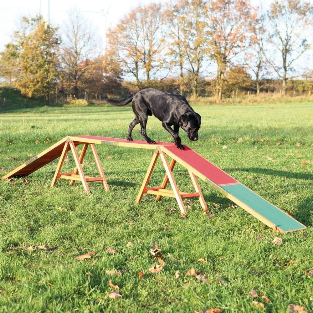 Agility Dog Activity Agility Dogwalk 456x64x30  cm  by Trixie Buy fair and favorable with a discount