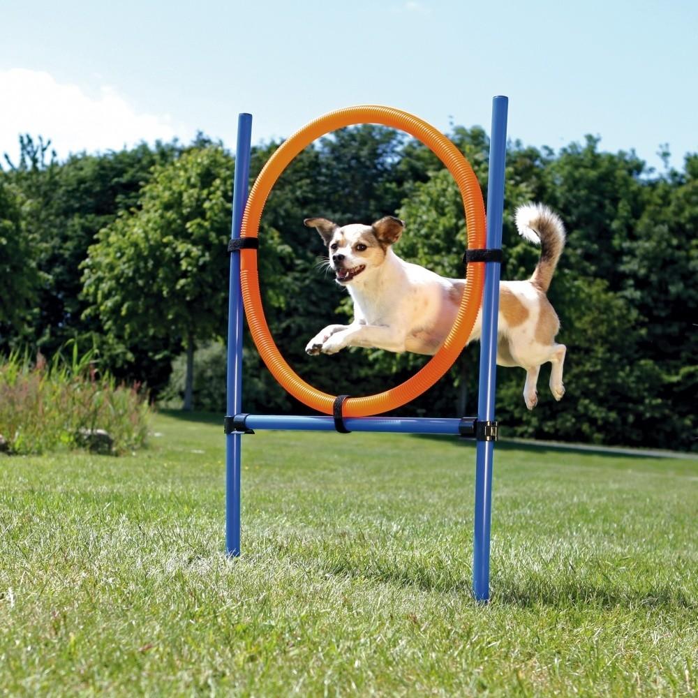 Dog Activity Agility Ring 115 cm  af Trixie køb rimeligt og favoribelt med rabat
