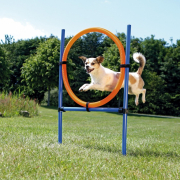 Dog Activity Agility Ring ø3x115/ø65 cm Osta loistohintaan koirallesi