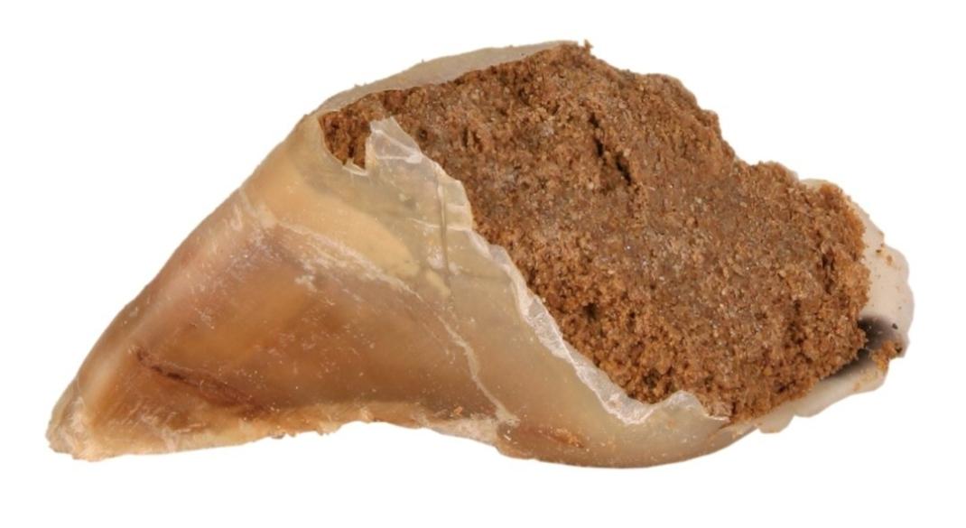 Trixie Kauwhoef, Vleespastei 115 g