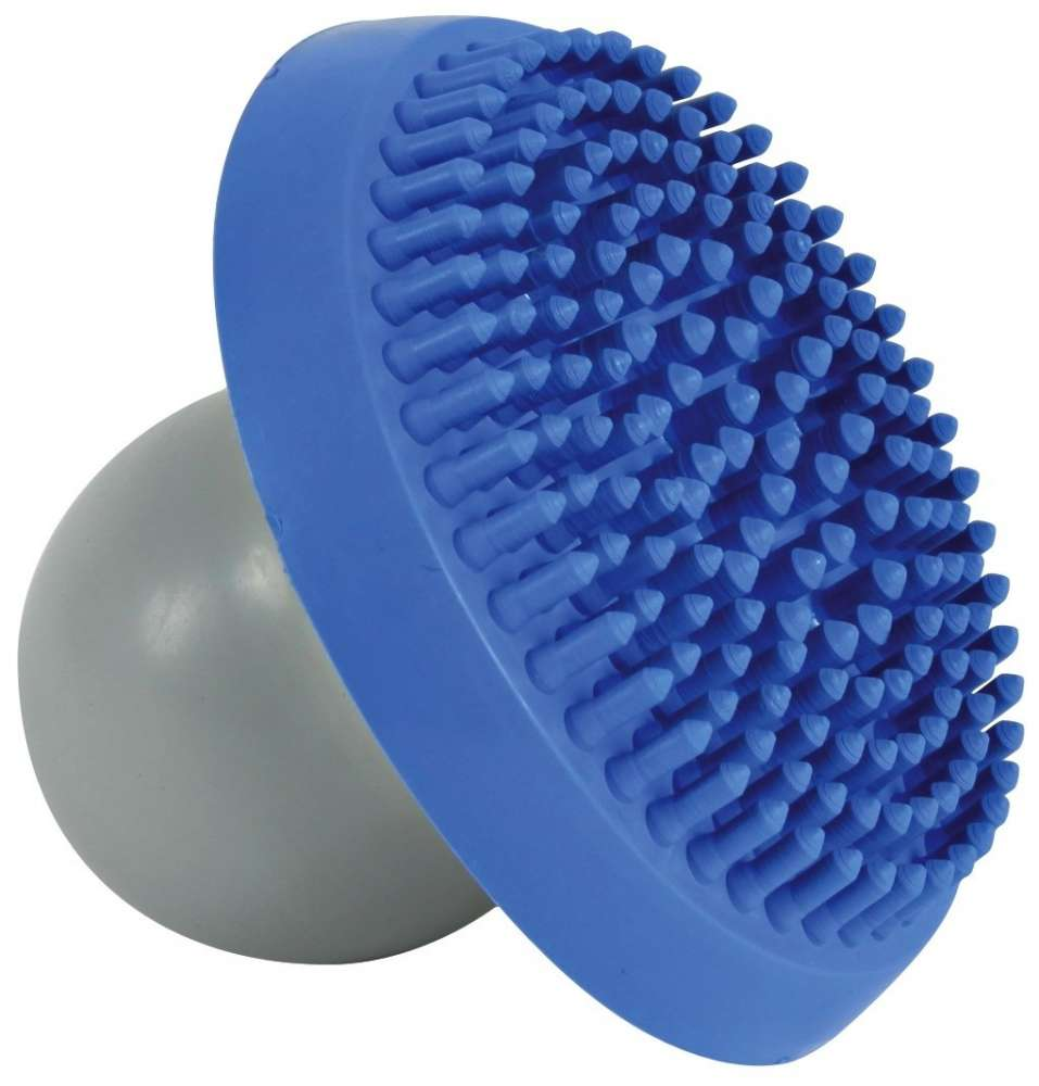 Brushes & Combs Shampoo and Massage Brush 10x17 cm  by Trixie Buy fair and favorable with a discount