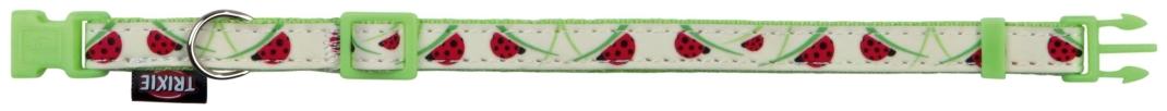 Trixie Collar con Correa Brilla en Oscuridad Verde claro 22-33x1 cm
