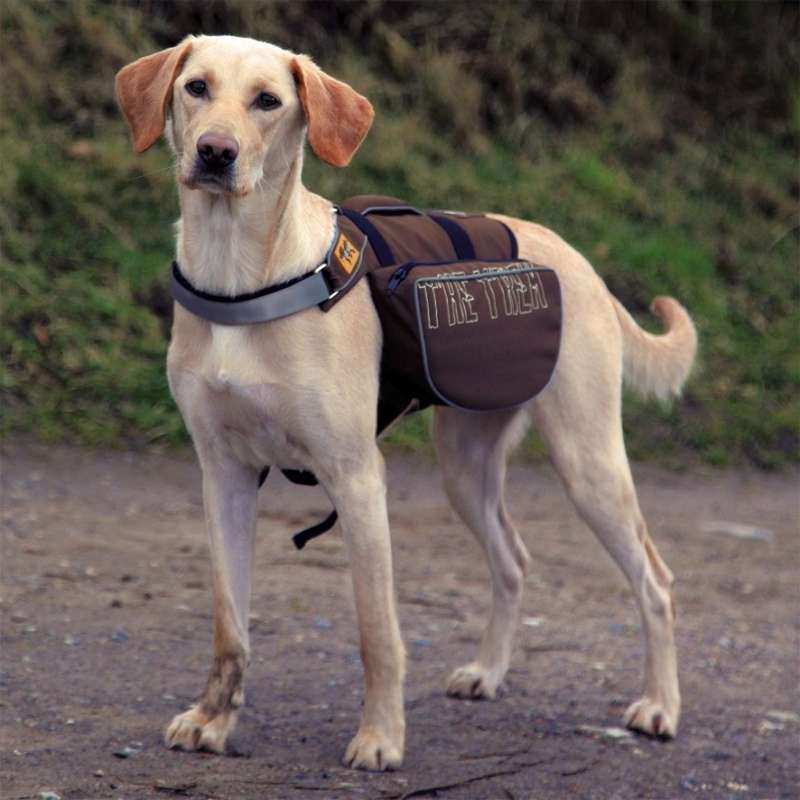 Trixie Mochila para Perros On the Trek 27x16 cm