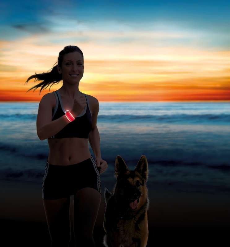 Trixie Banda Flash Enrollable para Perros  Rojo 4x35 cm