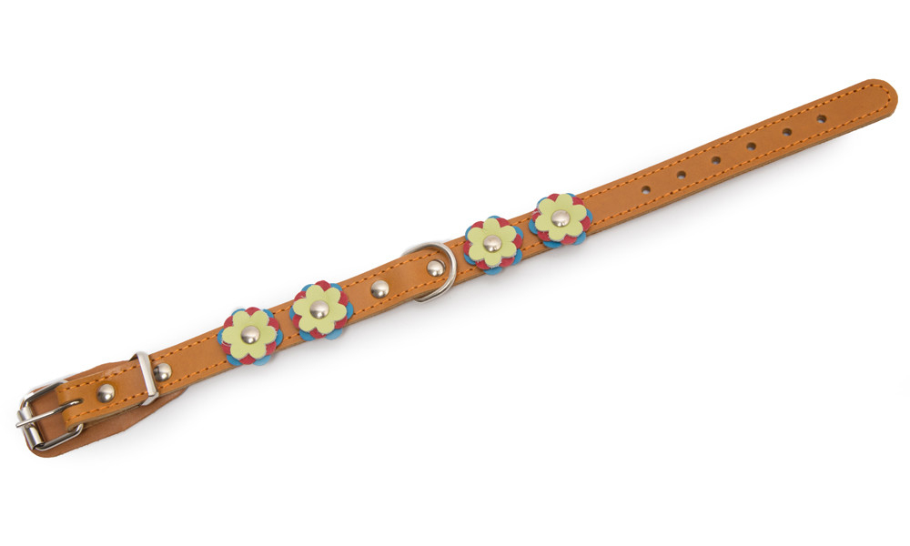 Leather Collars Collar with flowers S Light orange  by Bark&Bones Buy fair and favorable with a discount