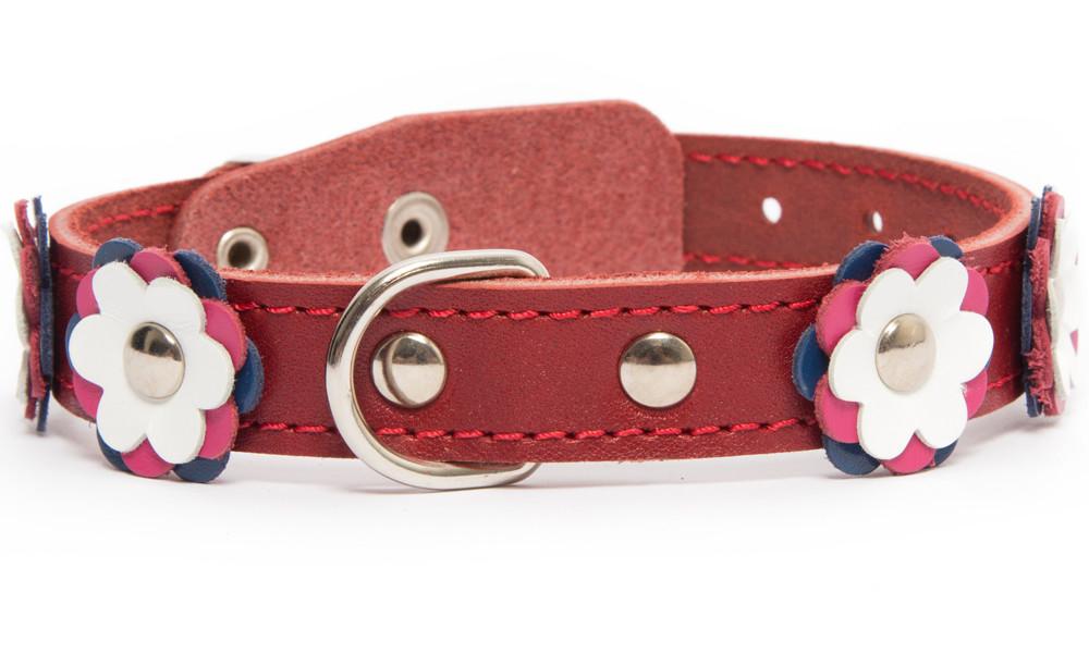 Bark&Bones Collar con Flores, S S 4059191999125 opiniones