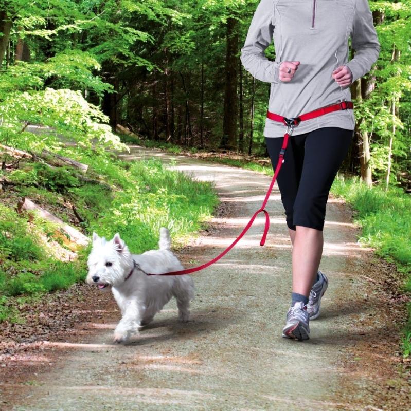 Trixie Cinturón con Correa, Canicross para Perros de Raza pequena y mediana S-M Rojo