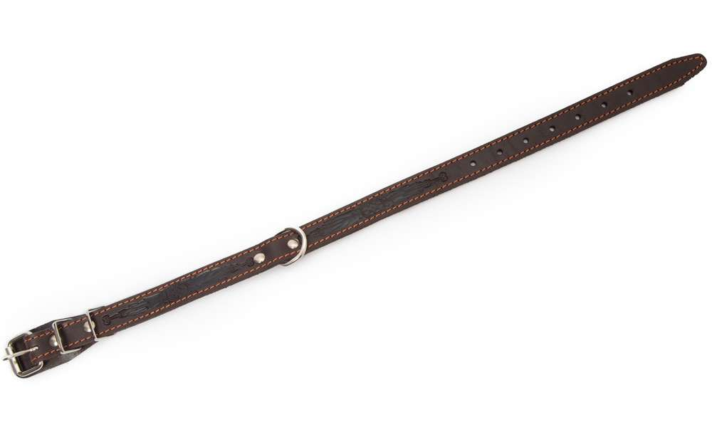 Leather Collars Collar with textile back and buckle in the middle, M/L Dark brown  by Bark&Bones Buy fair and favorable with a discount
