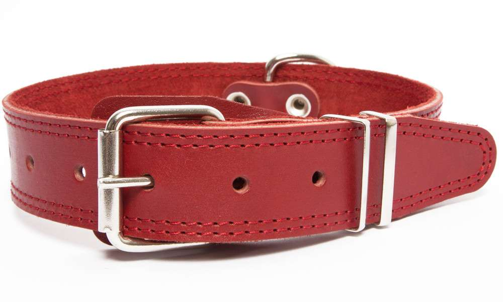Bark&Bones Collar with Clasp, Pattern and Textile Back  Bordeaux 43-58x3.5 cm