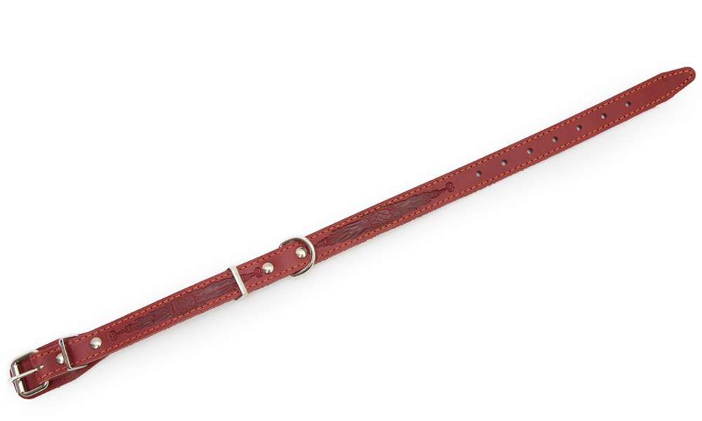 Bark&Bones Collar con Parte Trasera de Tejido y Hebilla en el Medio, M  Burdeos 33-45x2 cm