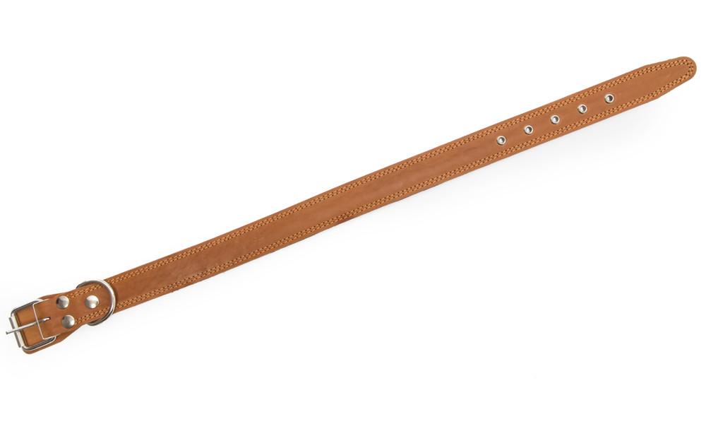 Bark&Bones Collar with textile back and metal eyelets, L Light orange L buy online