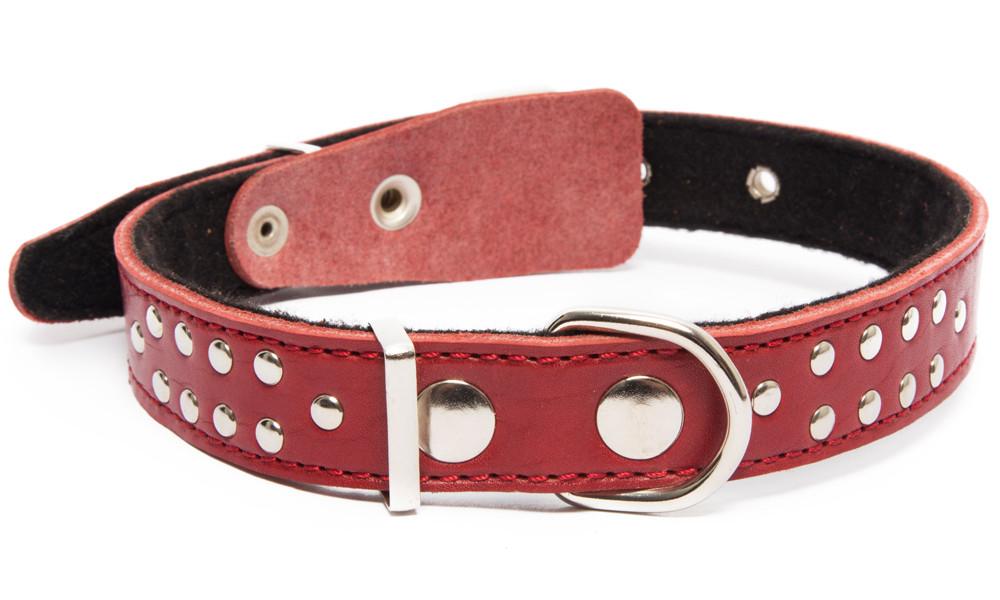 Bark&Bones Collar con Parte Trasera de Tejido con Remaches  Burdeos 40-54x2.5 cm