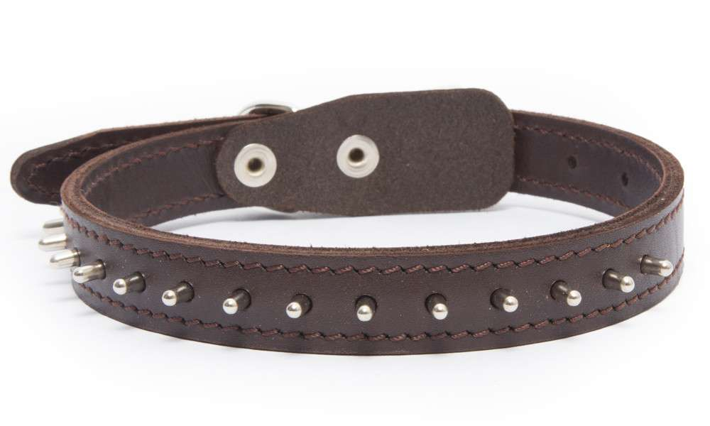 Bark&Bones Collar con Pinchos  Marron oscuro 33-45x2 cm