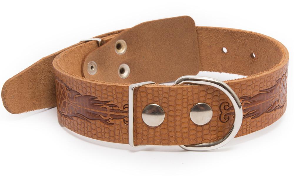 Bark&Bones Collar de Cuero con Diseño de Reptil y Hebilla en el medio Naranja claro L