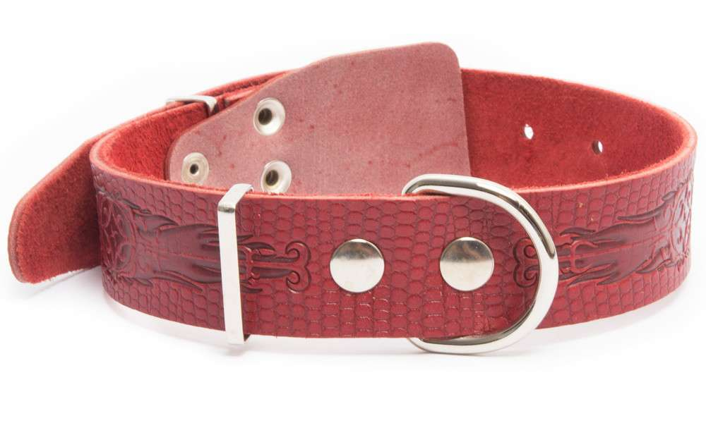 Bark&Bones Collar de Cuero con Diseño de Reptil y Hebilla en el medio  Burdeos L