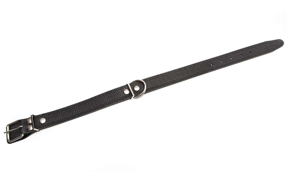 Leather Collars Collar with reptile pattern, clasp and insertion Black  by Bark&Bones Buy fair and favorable with a discount