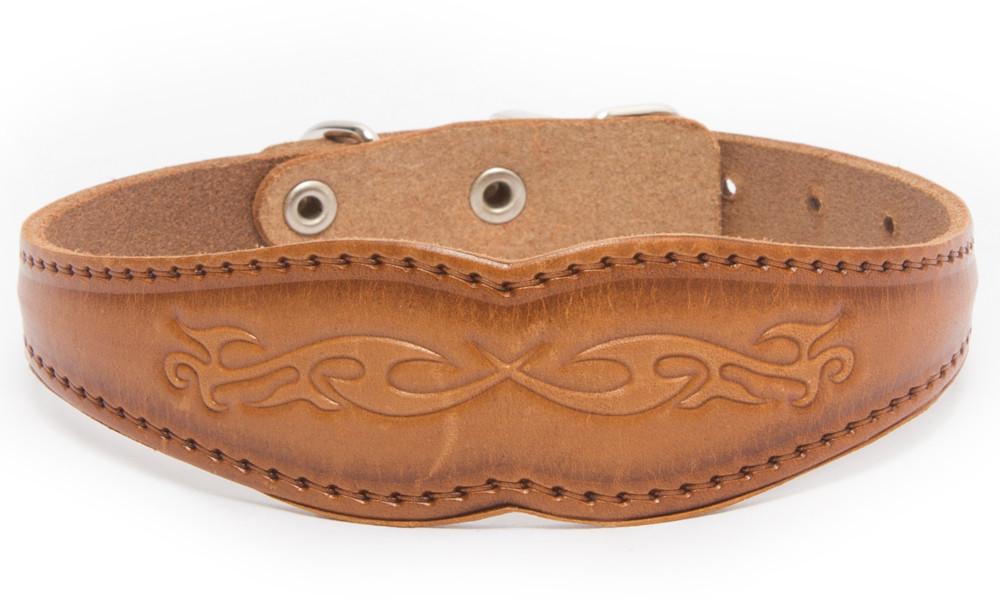 Bark&Bones Collar Ancho con Motivo para Perros Naranja claro 27-36x3.1 cm